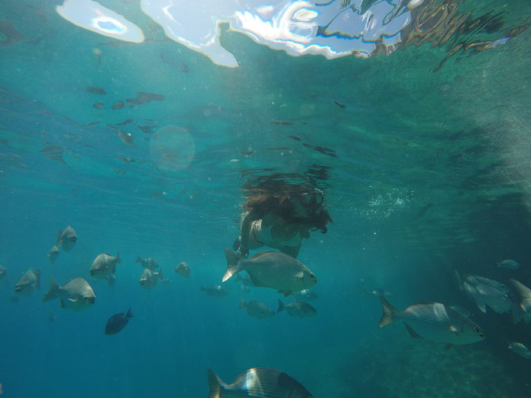 Snorkeling West View San Andrés